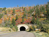 Fall Color at Tunnel