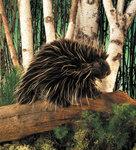 Puppet Porcupine